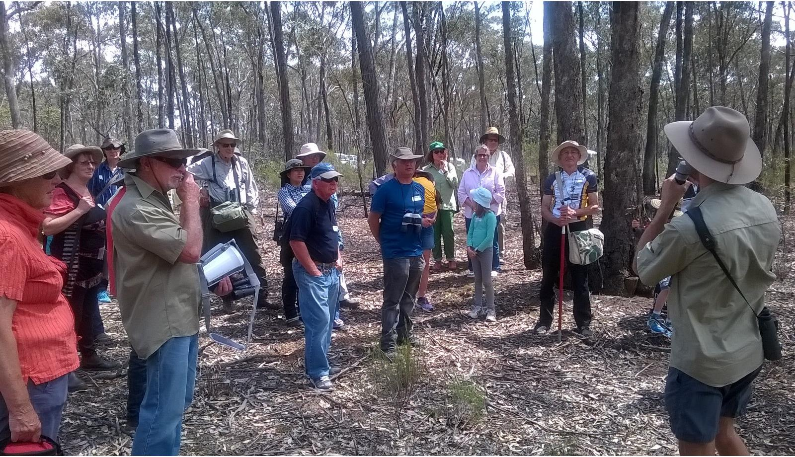Forest visit opens eyes to nature