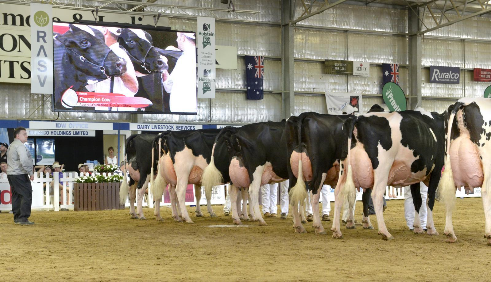 Dairy week success