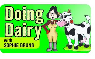 Doing Dairy with Sophie Bruns