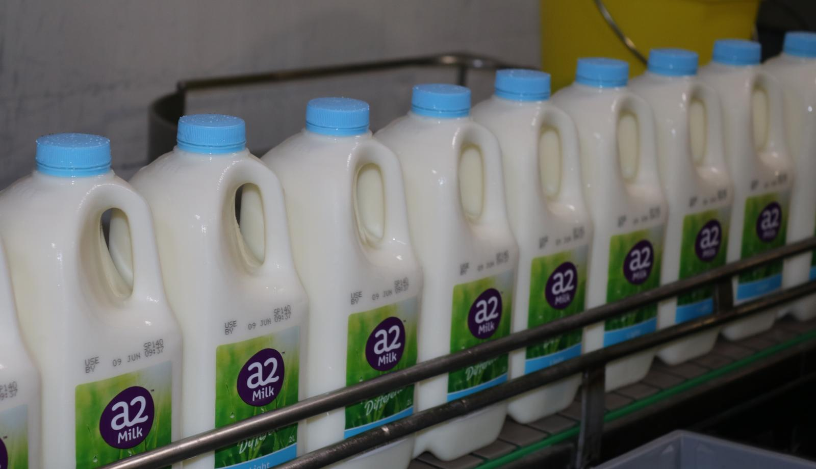 Delivering fresh milk to China's front door