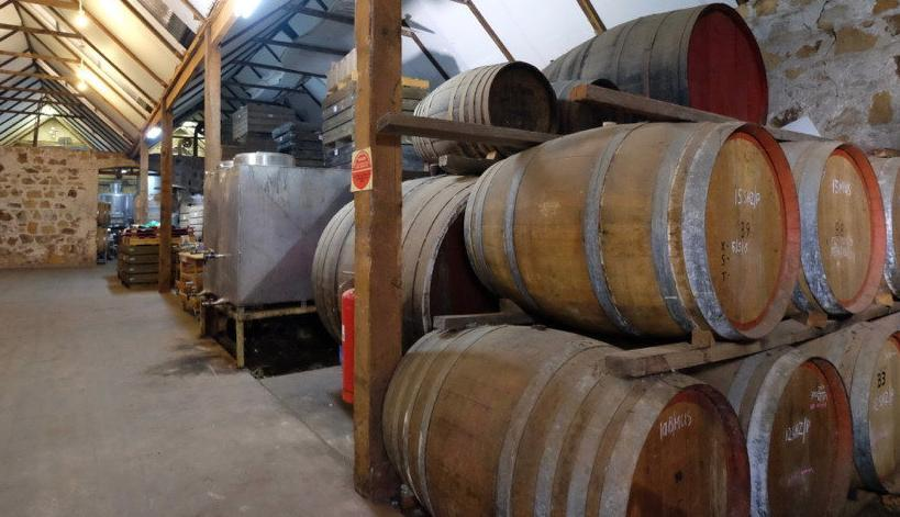 Winery set to go to auction