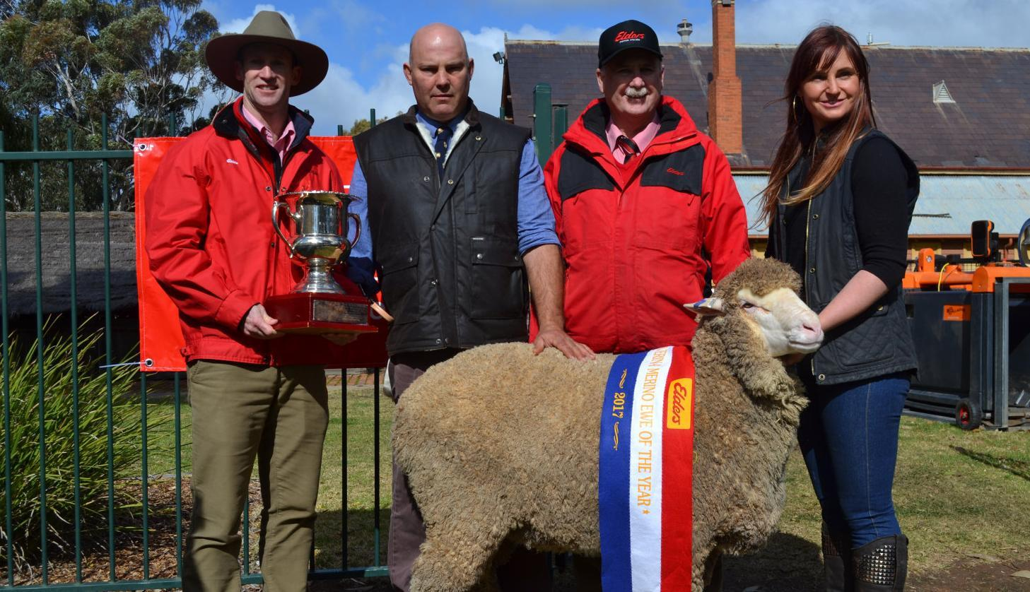 Expo celebrates best sheep