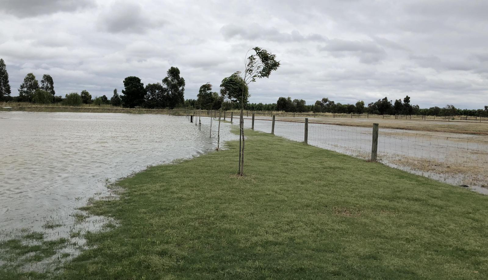 GALLERY: Flooding around the paddocks