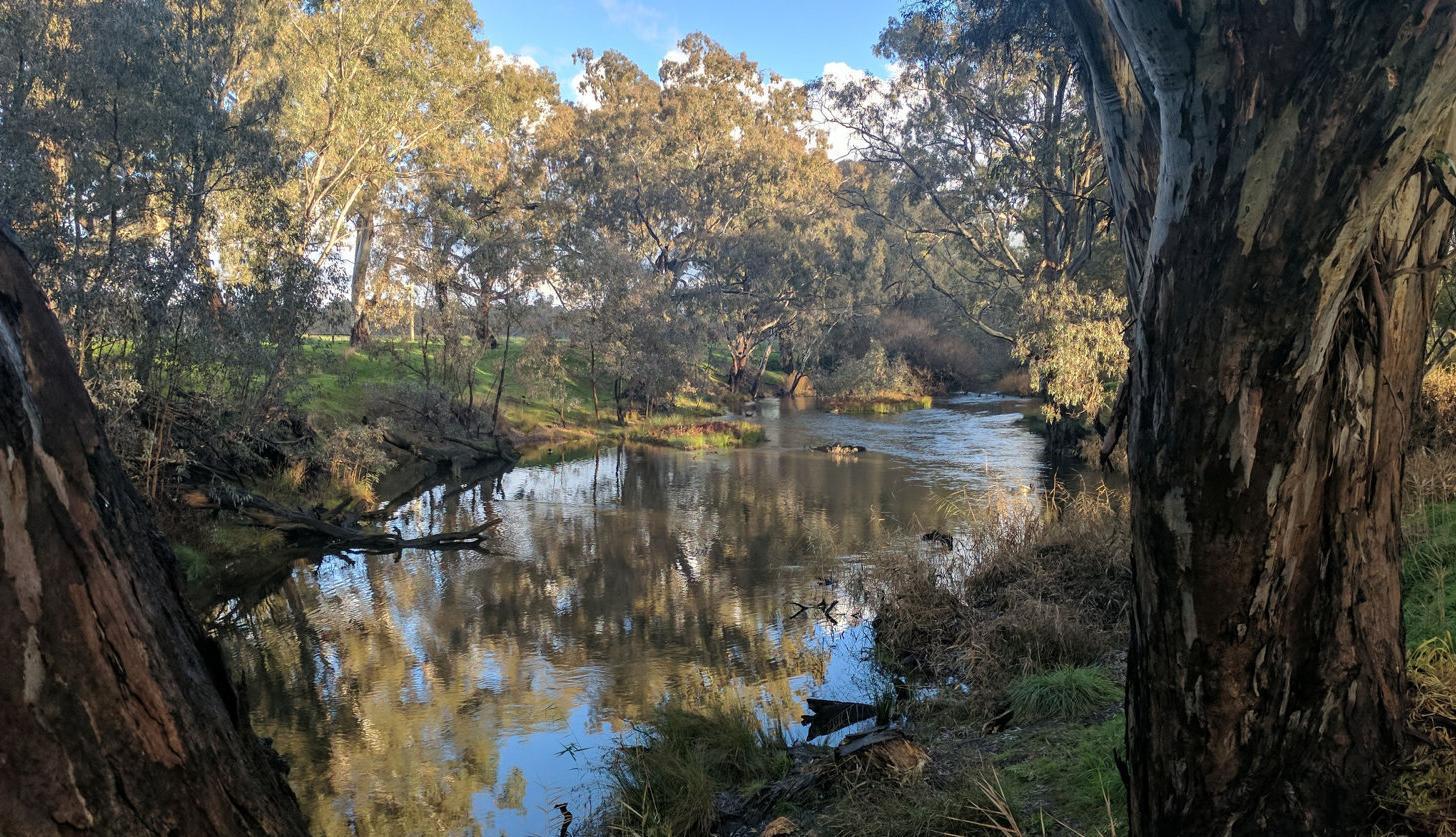 Environmental water benefits keep flowing