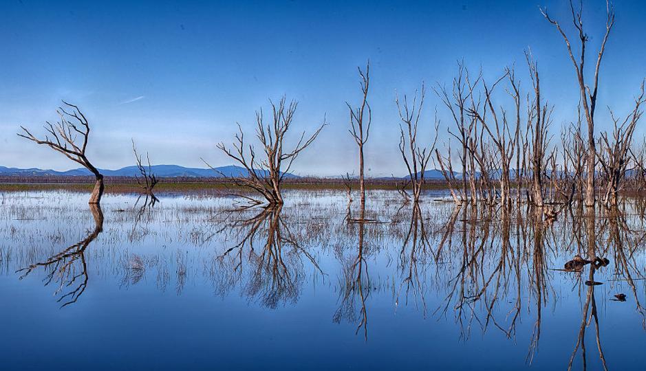 Wetlands in sun spotlight