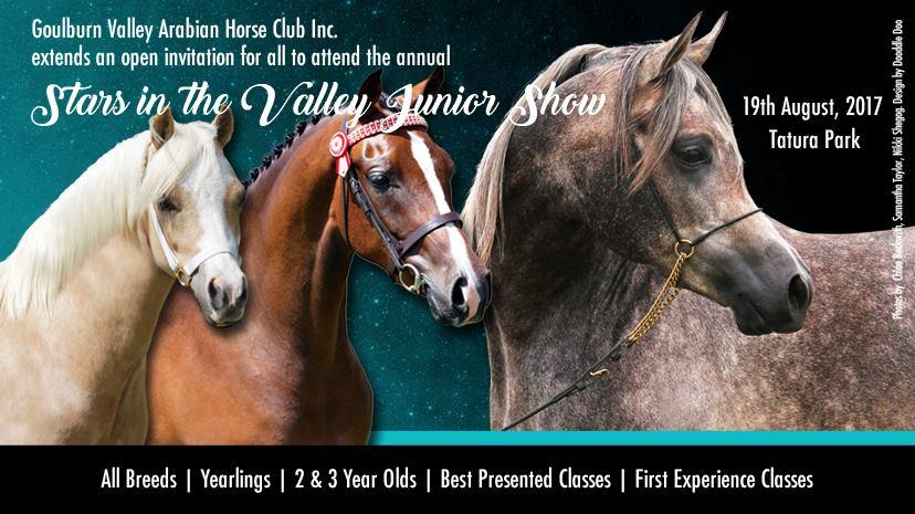 STARS IN THE VALLEY JUNIOR SHOW 2017