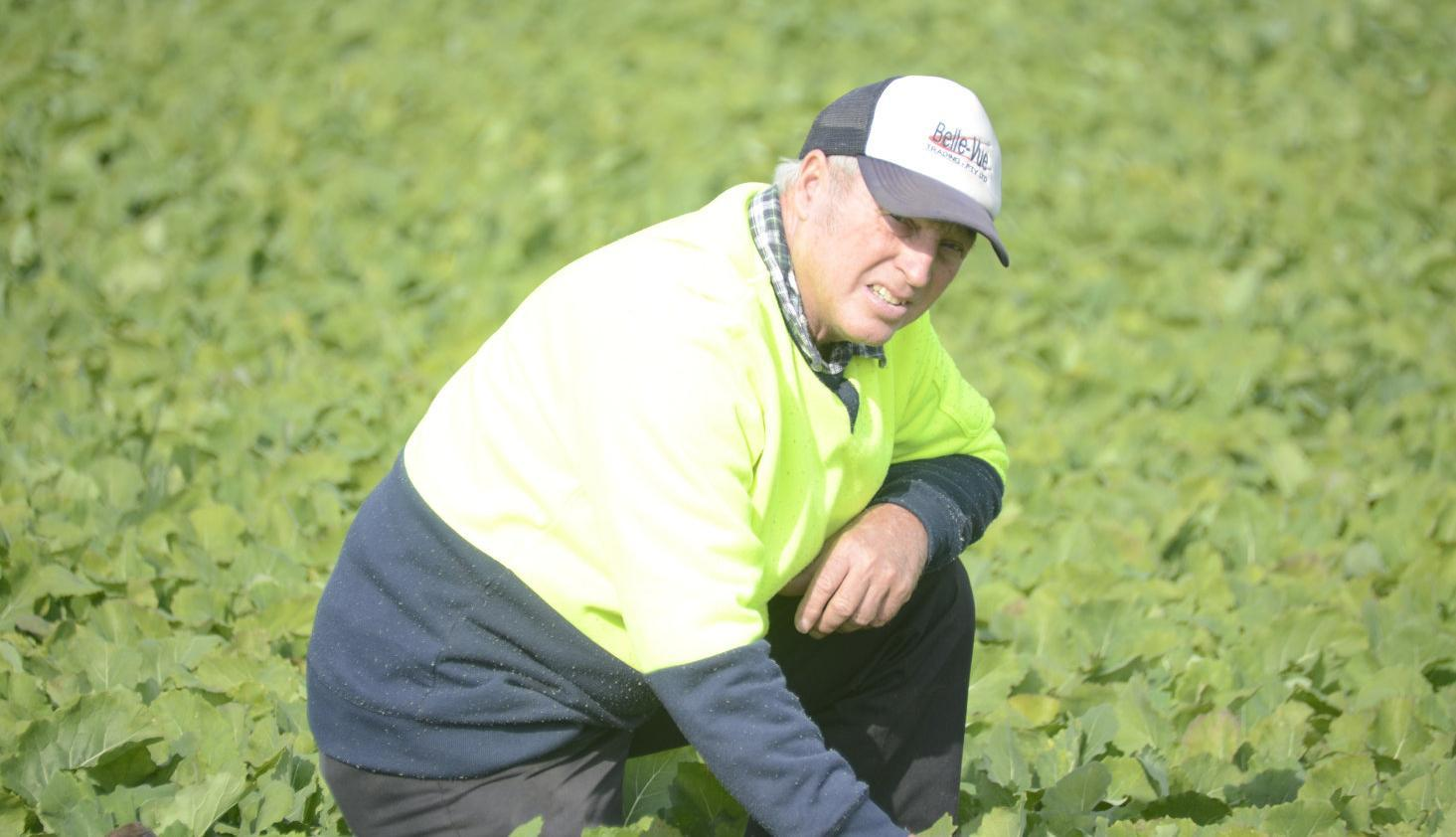Crops in need of winter rain