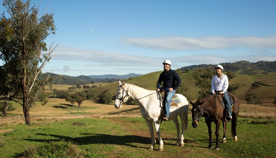 Horse riding shown to aid stroke recovery