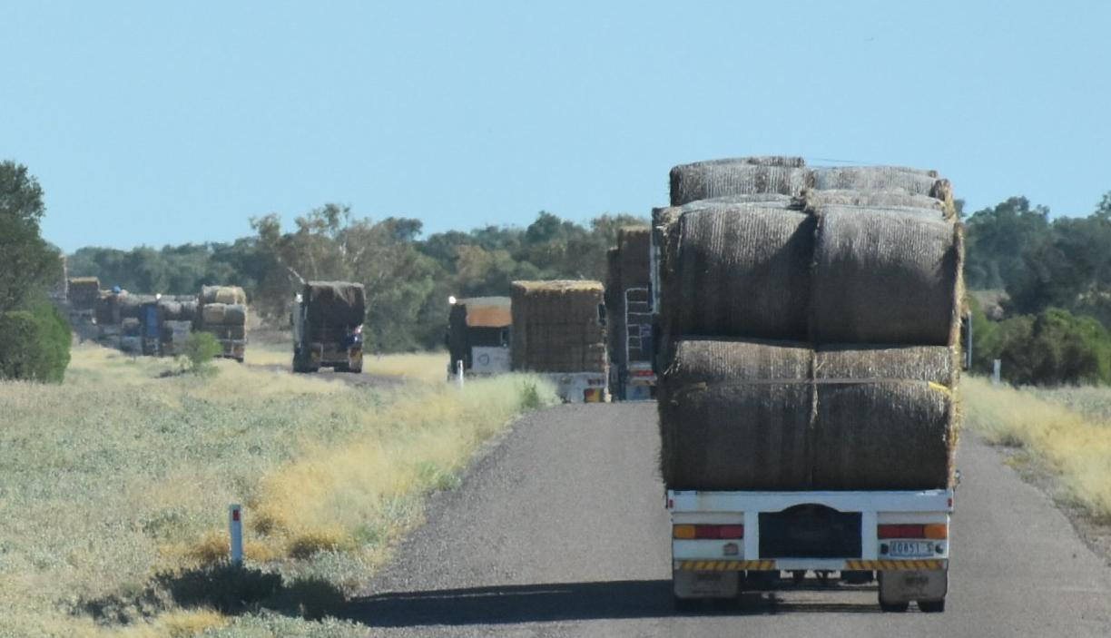 Hay runners on the road again