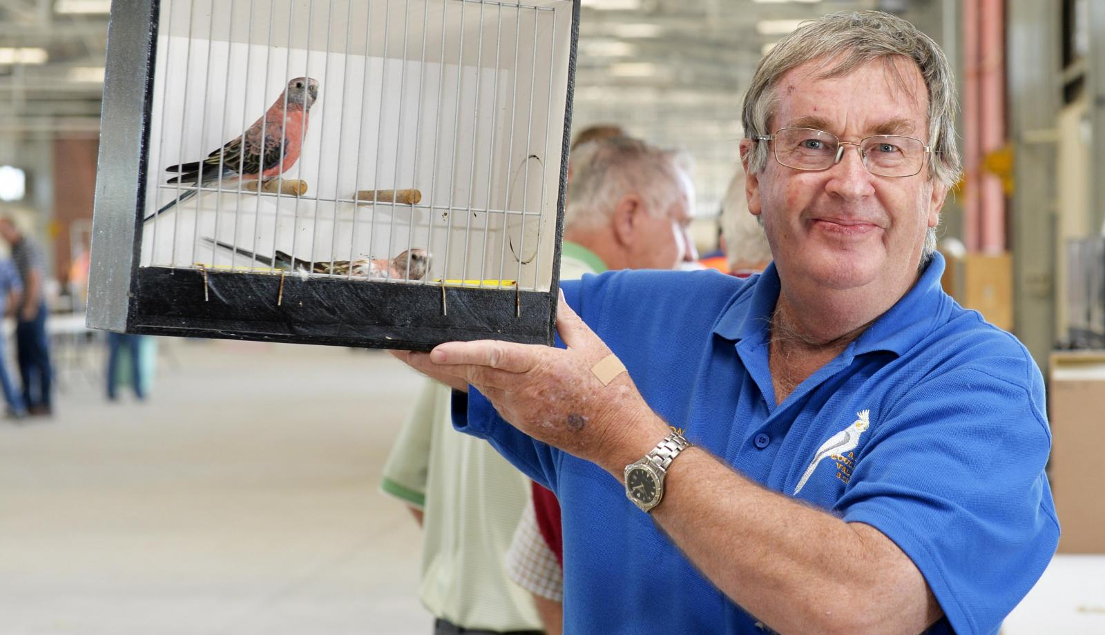 Shepparton bird sale gets the green light