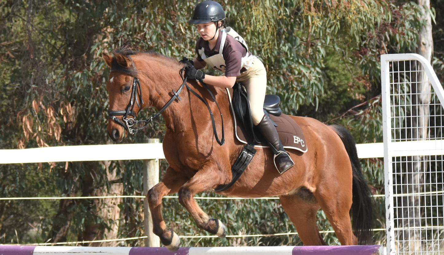 Cobram Pony Club event sees record numbers