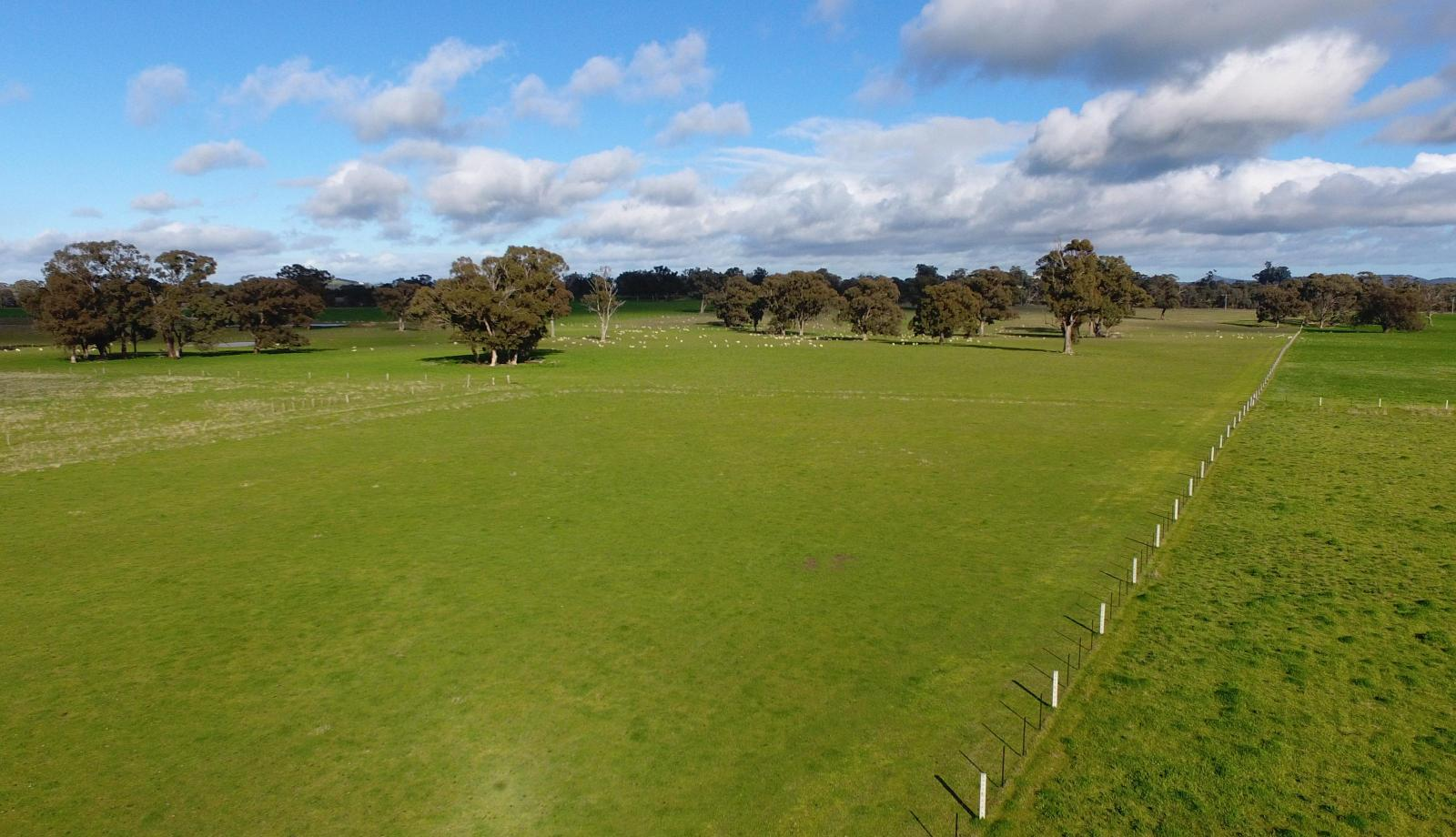 High price for Barmah farm