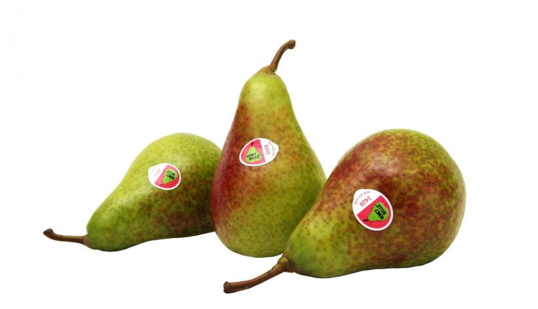 Pear variety is a tasty addition for Ardmona