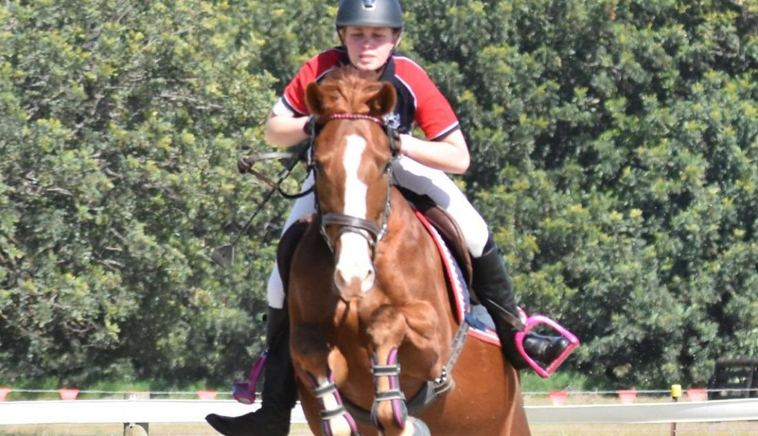 Riders put horses to the test