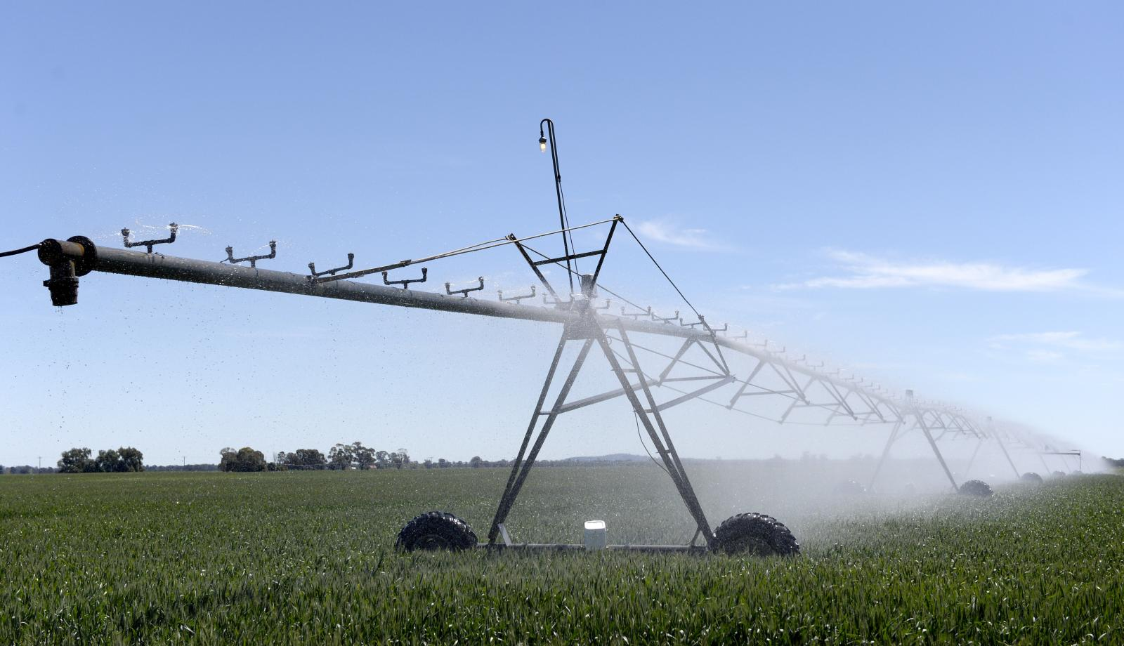 Irrigation table is back