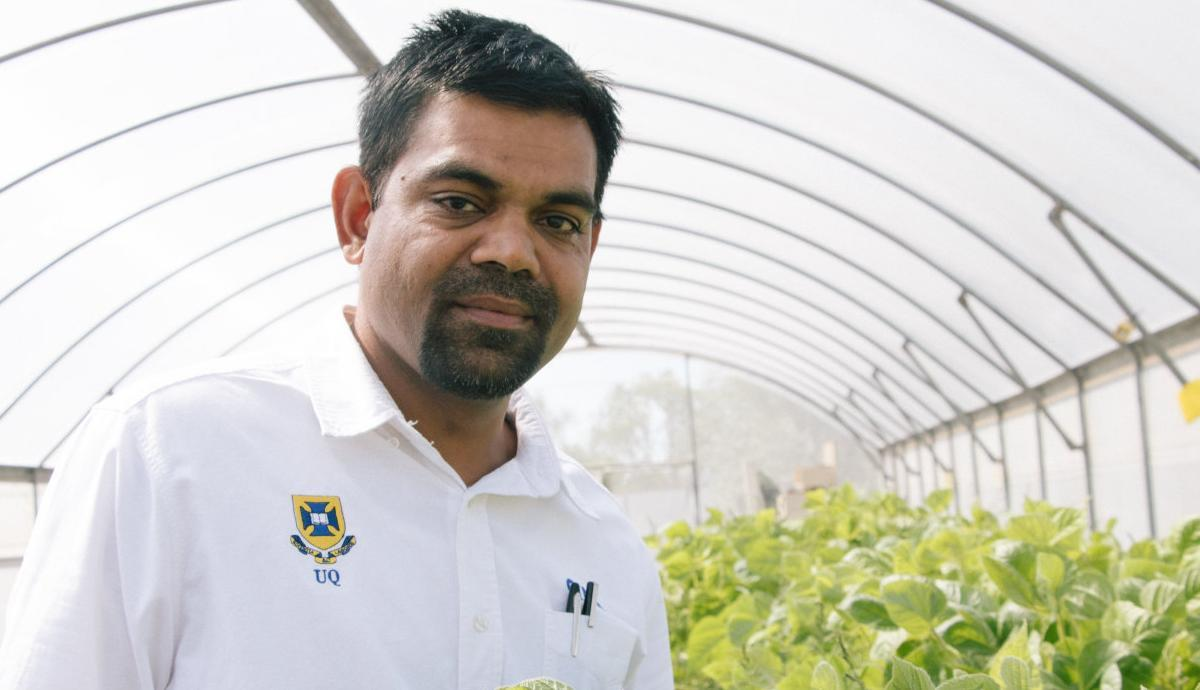 Research aims for fewer weeds