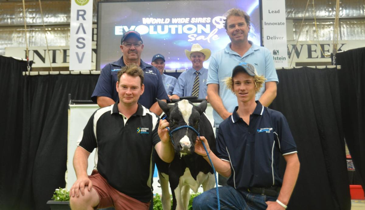 First up tops Holstein sale